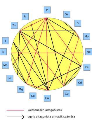 ásványi anyagok a látáshoz