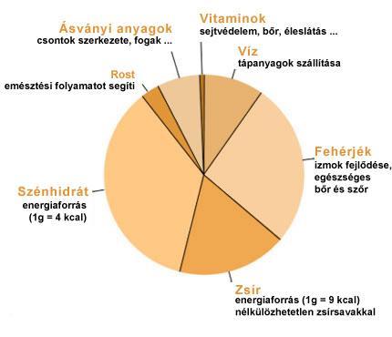 tápanyagok aránya a zsírvesztéshez